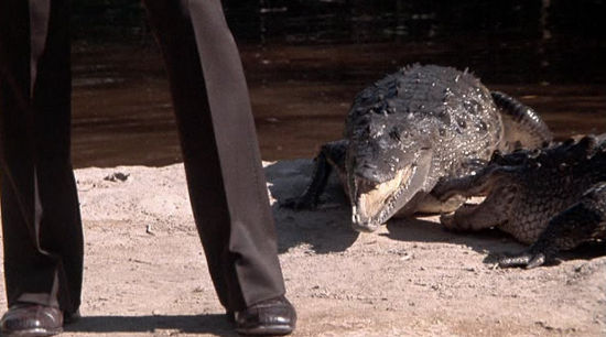 James Bond with a Crocodile